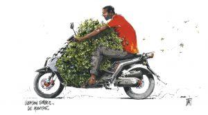 livraison-menthe-express-color-oran-marca