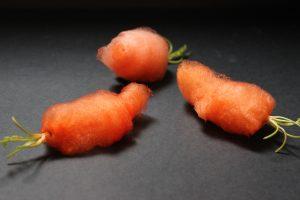 projet légumes poilus 2 Laure-Anne Caillaud